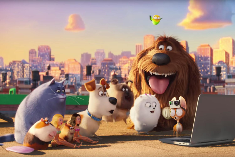 Мультфильм Тайная жизнь домашних животных 2 2019
